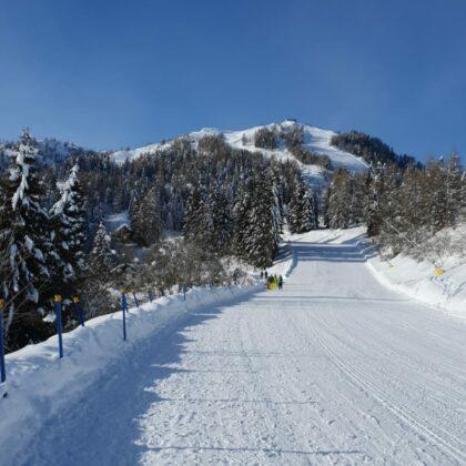 Pista da sci Monte Zoncolan, Friuli Venezia Giulia - Sci noleggiabili dall'Hotel Del Negro